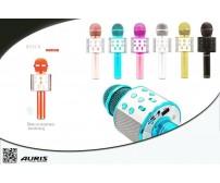 WS-858 BT Karaoke Usb Sd Aux Aurıs
